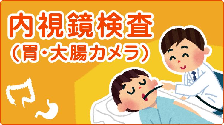 内視鏡検査(胃・大腸カメラ)